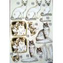 8 arkuszy z naciętymi motywami Psy i Koty