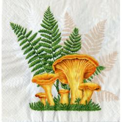 Serwetki do decoupage - grzybki prawdziwki i kurki