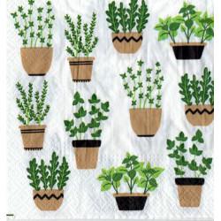 Serwetki do decoupage - zioła w doniczkach