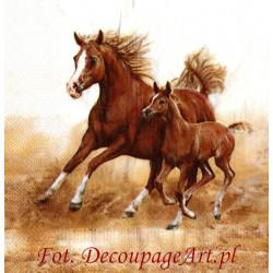 Serwetki do decoupage - piekne konie