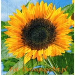 Serwetki do decoupage - duże słoneczniki