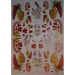 Papier Celina do decoupage 50 x 70 cm Tomato Sauce