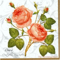 Serwetki do decoupage - rosa burgundica na białym