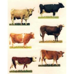 Kalkomania Arte - krowy