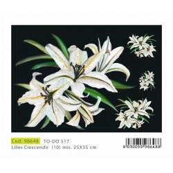 Papier Artistico Mini Soft Lilies Crescendo 25X35 517