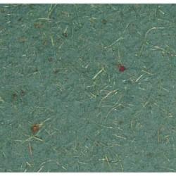 Papier kokosowy zielony