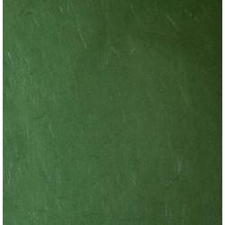Bibuła jedwabna 47x64 cm - ciemno-zielona