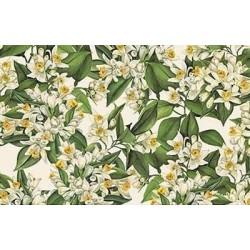 Papier Tassotti do decoupage 50x70 cm - Kwiaty pomarańczy