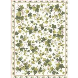 Papier 50 X 70 cm - EASY 172 Bluszczyk