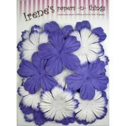 Zestaw papierowych kwiatków (20 szt.) fioletowe z białym