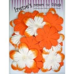 Zestaw papierowych kwiatków (20 szt.) pomarańczowe z białym