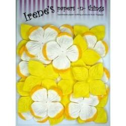 Zestaw papierowych kwiatków (20 szt.) żółte z biało-żółtymi