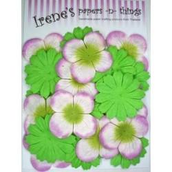 Zestaw papierowych kwiatków (20 szt.) zielone z biało-różowymi