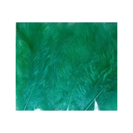 Kolorowe piórka zielone
