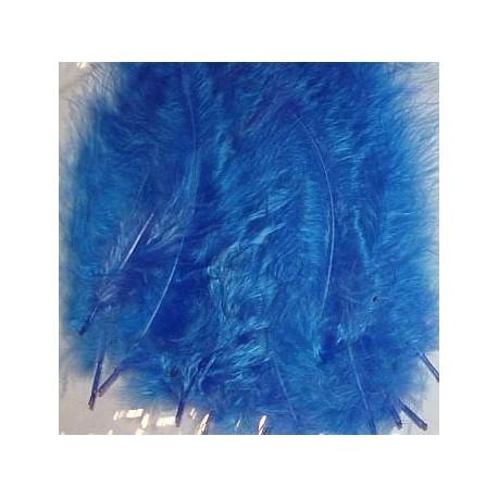 Kolorowe piórka niebieskie