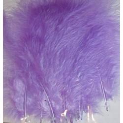 Kolorowe piórka lila