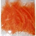 Kolorowe piórka pomarańczowe
