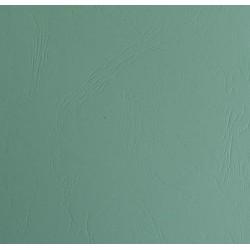 Ladder paper - karton faktura skóry zielony