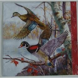 Serwetki do decoupage - dwie kolorowe kaczki