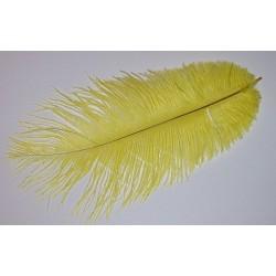 Pióro strusie naturalne żółte