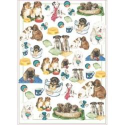 Papier 50 X 70 cm - EASY 170 Psy i pieski