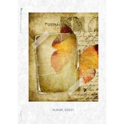 Papier ryżowy Kalit do decoupage album0021 Czerwony motyl