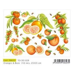 Papier Artistico Mini Oranges & Bees 25X35 029