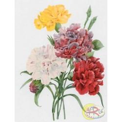 Kalkomania Arte - Cztery kwiaty i pączek
