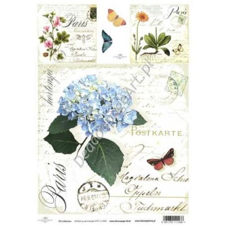 Papier do decoupage ITD SOFT 005 - Zioła hortensja