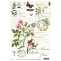 Papier do decoupage ITD SOFT 007 - Zioła dzika róża