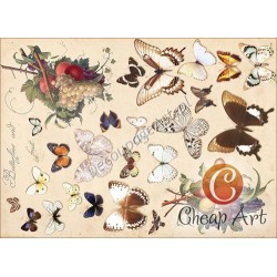 Papier do decoupage soft Cheap-Art A3 Motyle