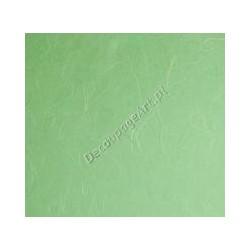 Papier ryżowy 50x70 cm - mięta