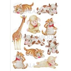 Papier ryżowy do decoupage Digital Collection 079 kotki i inne zwierzęta