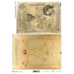 Papier do decoupage ITD SOFT 061 - Leonardo
