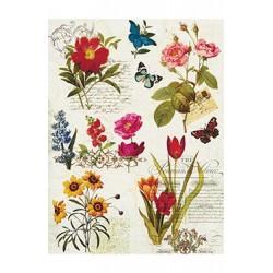 Papier Ryżowy Cadence 042 Kwiaty