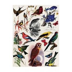 Papier Ryżowy Cadence 048 Ptaki