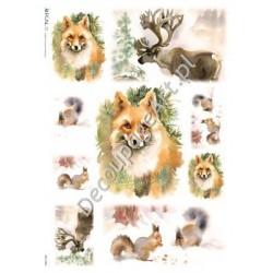 Papier ryżowy Kalit do decoupage ani0057 Leśne zwierzęta