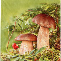 Serwetki do decoupage - grzybki prawdziwki