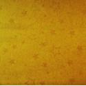 Karton dwustronny w złote gwiazdki